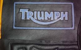 29-Logo-Triumph